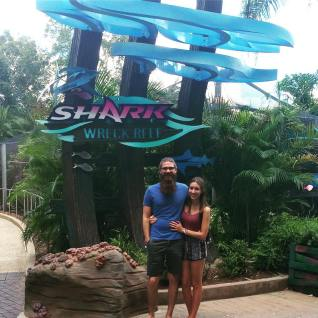 shark-wreck-reef